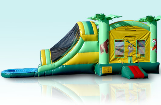 Tropical Combo with Pool and Basketball Hoop 15 Wide X 36 Long