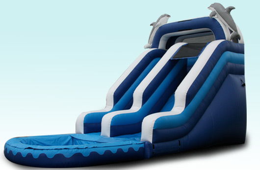 18 Foot Dolphin Water Slide